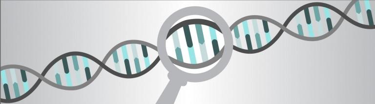 ECO-CODING-DNA-Detective-768x213.jpg