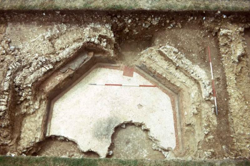 The octagonal cold plunge bath at Dewlish, Dorset