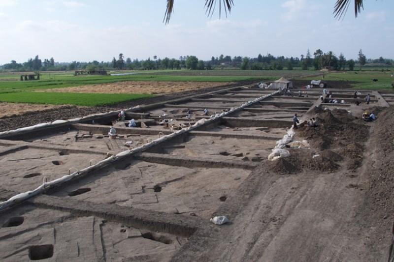 Archaeology dig at Hyksos palace