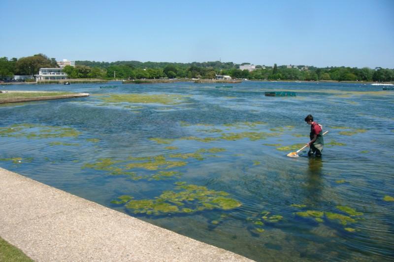 Poole Park boating lake
