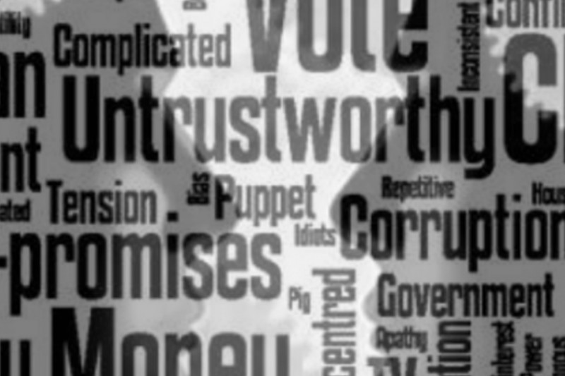 A cluster of words relating to politics