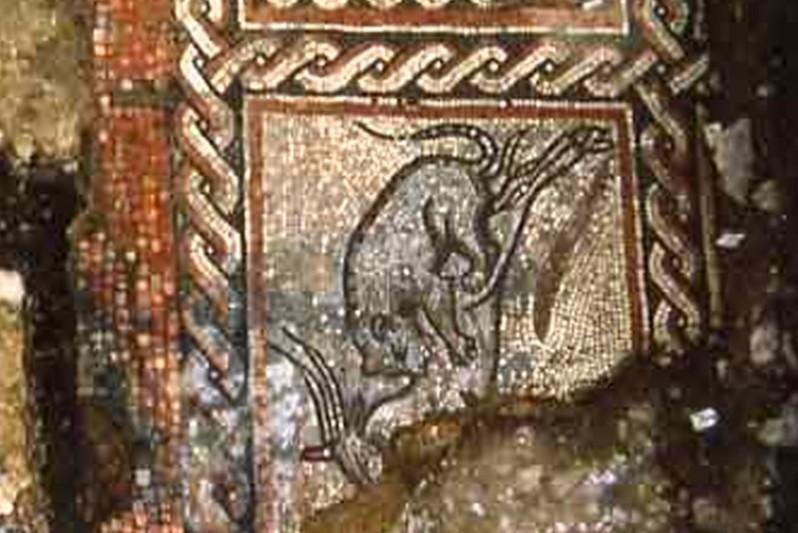 A floor at the Dewlish Roman Villa site