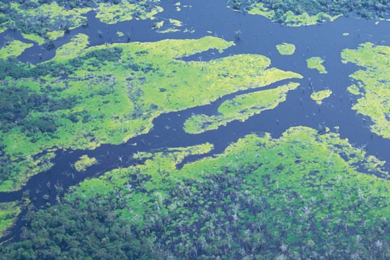 ecology wildlife conservation