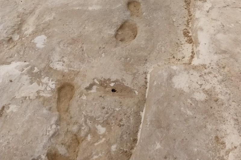 Earliest footprints White Sands 3