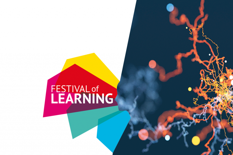 Festival of Learning 2018 banner