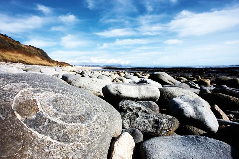World Heritage Jurassic Coast