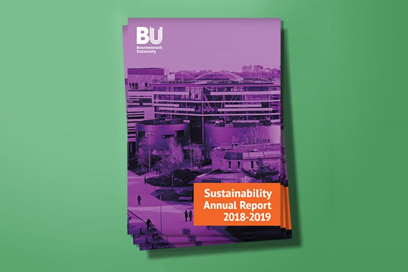 Sustainability annual report 2018/19 image
