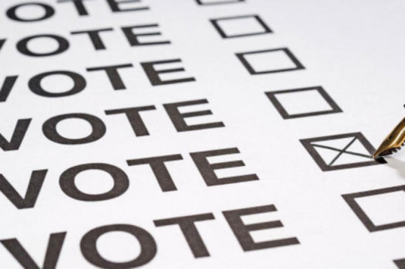 OPINION: What to expect from post-pandemic voting behaviour