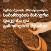 Mass graves - Georgian translation