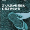 Mass graves - Simplified Chinese translation