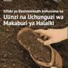 Mass graves - Swahili translation