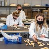 Students working in the Anthropology Lab on Talbot Campus