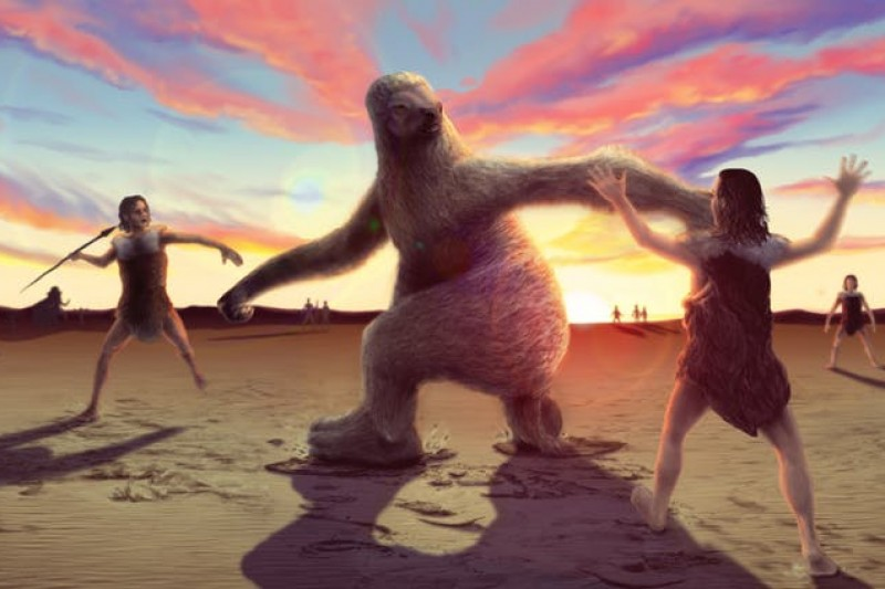 How to hunt a giant sloth