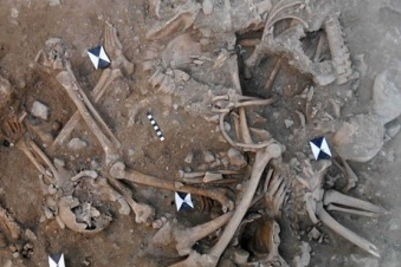 Excavations at Sidon Castle, Lebanon revealed two mass grave deposits containing partially articulated and disarticulated human skeletal remains.