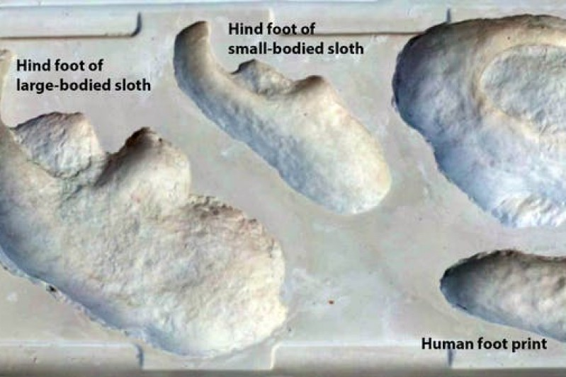 Footprint comparison