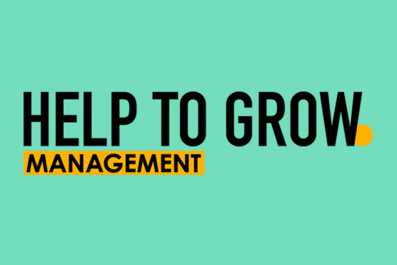 Help to Grow Management course
