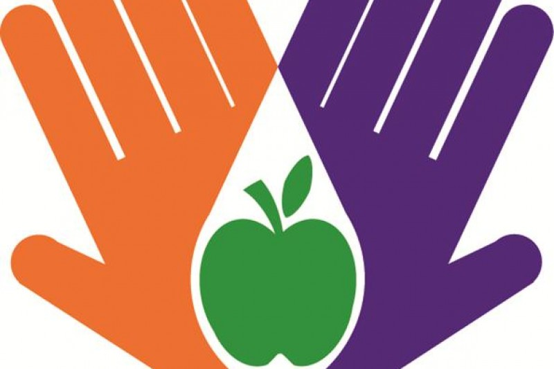 Nutrition and Dementia project logo