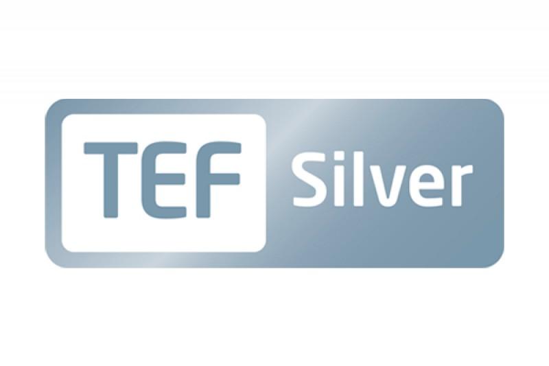 TEF Silver logo