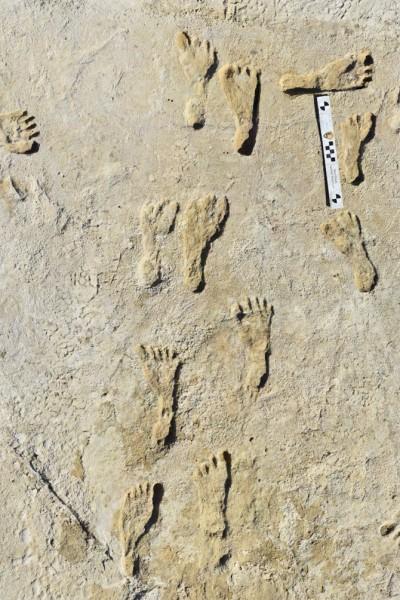 Earliest footprints White Sands 1