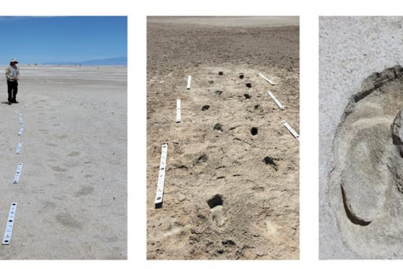Tracking the footprints